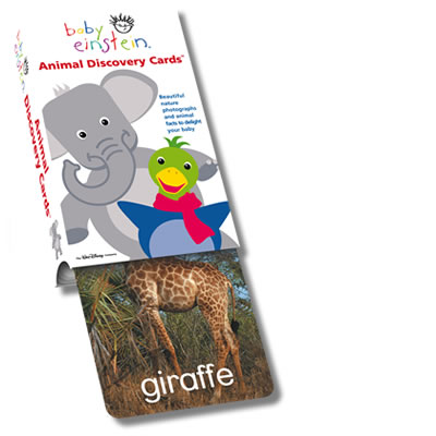 Baby Einstein Flash Card: Animal Discovery Cards