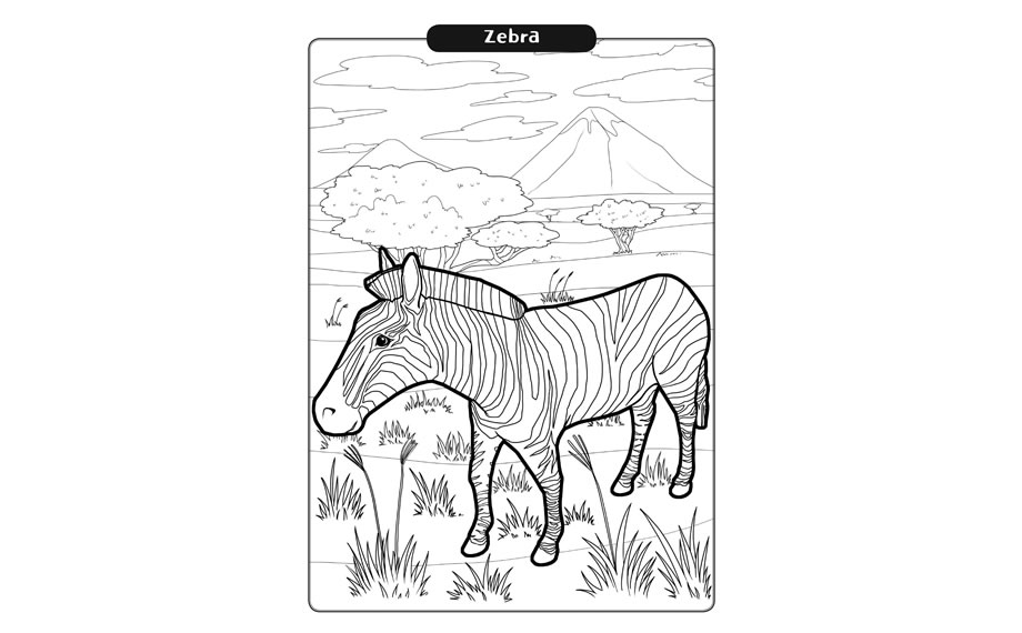Arevo Augmented Reality 3D Colouring Magic Book Safari